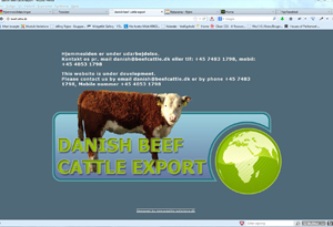 danish-beefcattle-export